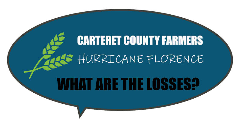 Did farmers have a big loss to crops, livestock, and agriculture after Hurricane Florence in Carteret County?