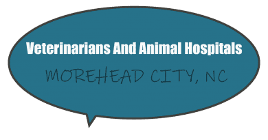 Emergency after hours veterinarians and animal hospitals near Morehead City NC