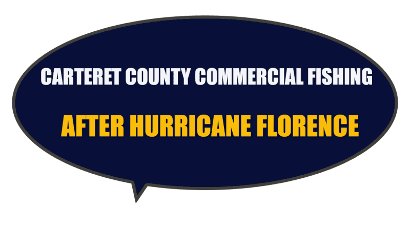What are the impacts on oysters and shellfish to commercial fishing in Carteret County NC after Hurricane Florence?