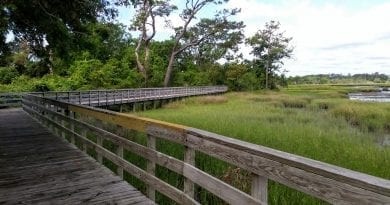 Boardwalk pictures from Crab Point