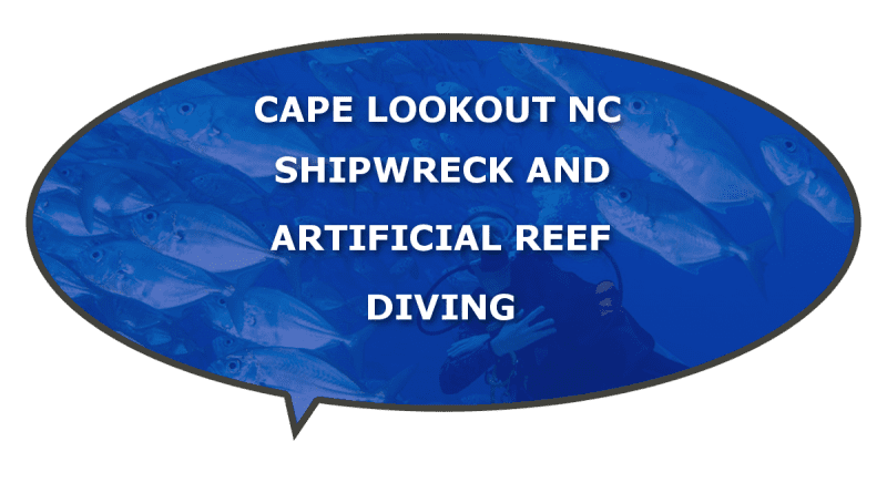 barrier island diving near Cape Lookout NC