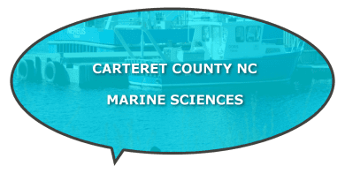 Carteret Marine Sciences NC programs