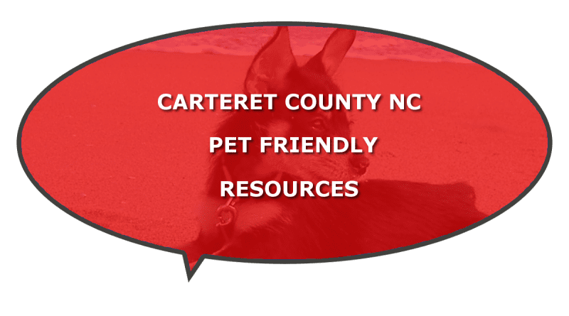 NC Carteret Pet Friendly hotels beaches