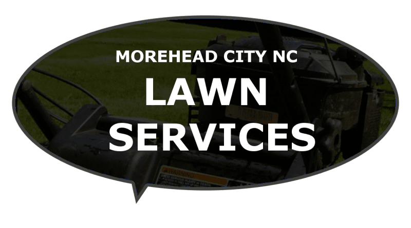 Good business lawn mowing services Morehead NC