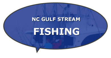 NC Gulf Stream fishing and boats