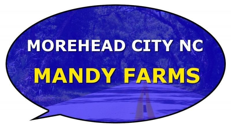 Morehead Mandy Farms information
