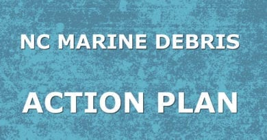 Carteret marine debris action cleanup