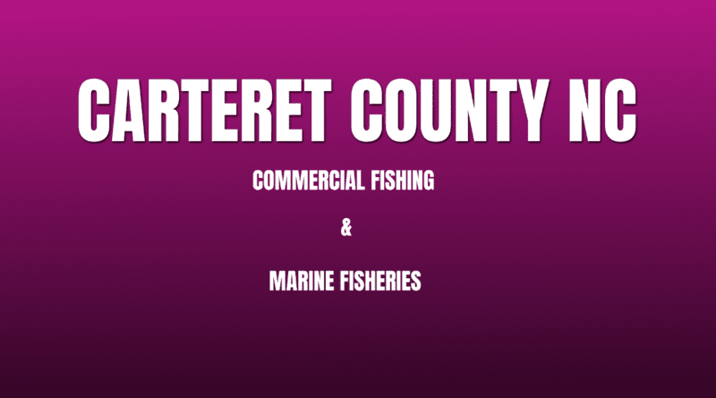 fisheries carteret nc commercial fishing