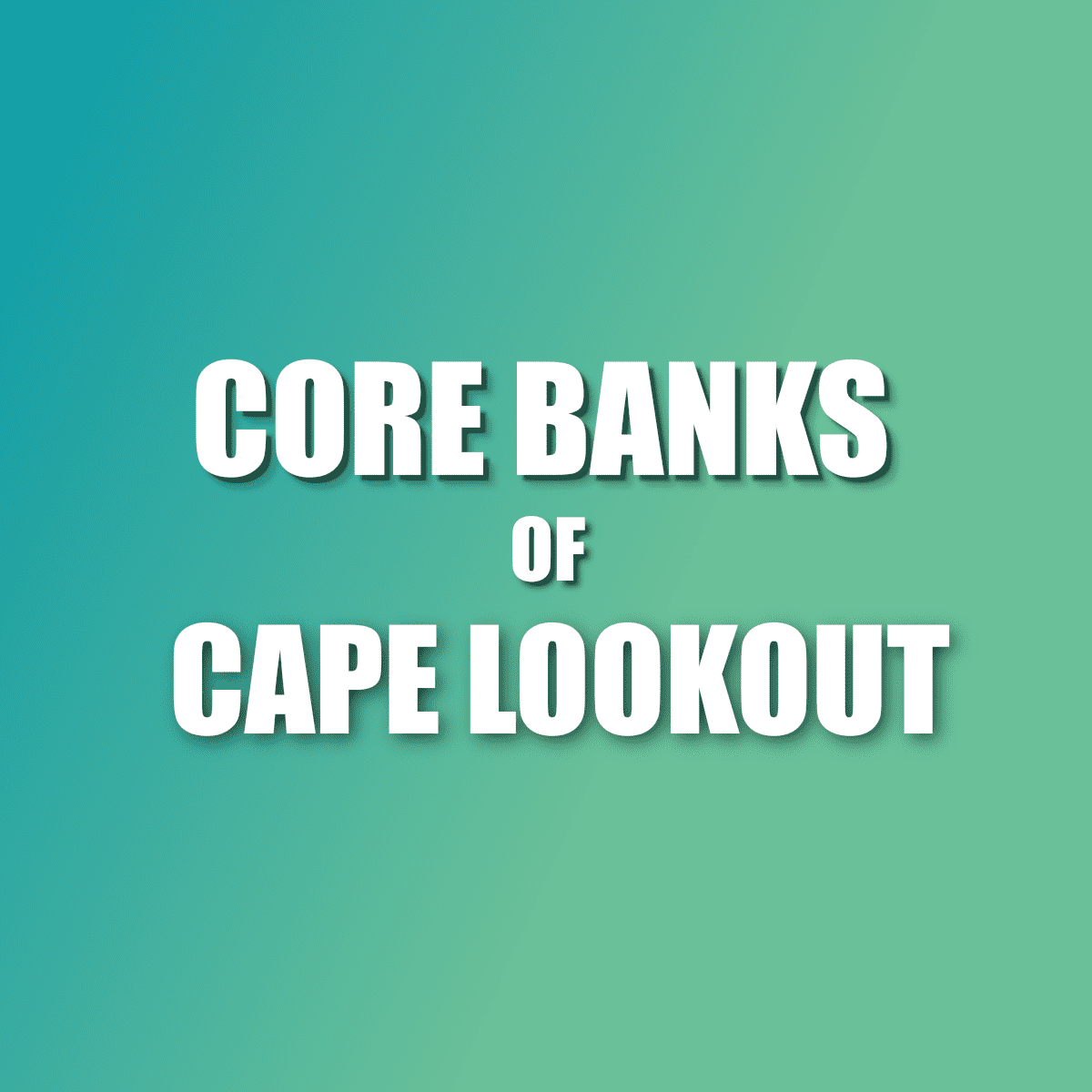 Cape Lookout Core Banks discussions
