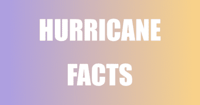Top facts about hurricane and tropical